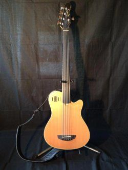 Godin A5 Fretless Bass